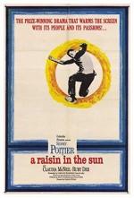 Güneşte Bir Leke (1961) afişi