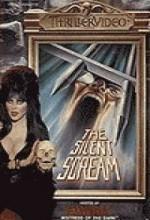 Hammer House Of Horror: The Silent Scream (1980) afişi