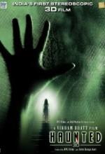 Haunted 3d (2011) afişi