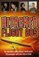 Hava Korsanları: Uçuş 285 (1996) afişi