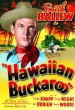 Hawaiian Buckaroo (1938) afişi