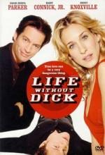 Hayatımdan Çıkar Mısın! (2001) afişi