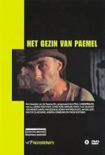 Het Gezin Van Paemel (1986) afişi