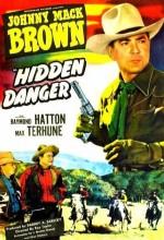 Hidden Danger (1948) afişi