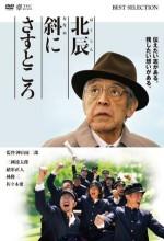 Hokushin Naname Ni Sasu Tokoro (2007) afişi
