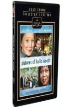 Pictures of Hollis Woods (2007) afişi