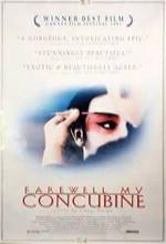Elveda Cariyem (1993) afişi