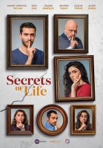 Hayat Sırları (2017) afişi