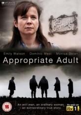 Hazır Yetişkin (2011) afişi