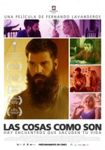 Her Şey Olacağına Varır (2013) afişi