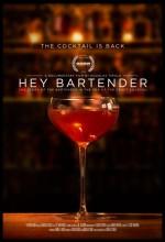 Hey Bartender (2013) afişi