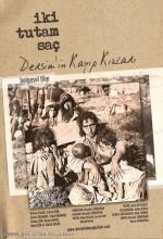 İki Tutam Saç: Dersim'in Kayıp Kızları (2010) afişi