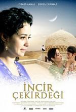 İncir Çekirdeği (2009) afişi