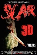 İz 3D (2007) afişi