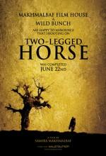 İki Bacaklı At