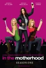 In The Motherhood (2009) afişi