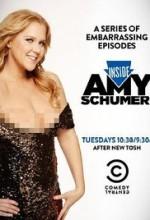 Inside Amy Schumer 3.Sezon (2013) afişi