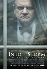 Into The Storm (2009) afişi
