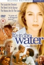 it's in The Water (1997) afişi