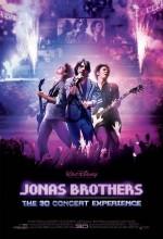 Jonas Brothers: Üç Boyutlu Konser Deneyimi (2009) afişi