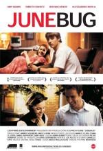 Junebug (2005) afişi