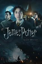 James Potter ve Kılıcın Varisi