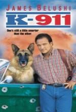 K-911 (1999) afişi