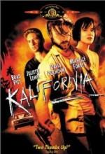 Kalifornia (1993) afişi