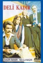 Kan (1977) afişi
