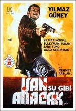 Kan Su Gibi Akacak (1969) afişi