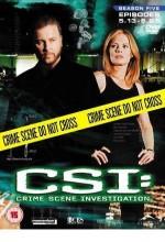 Kanıt Peşinde (2004) afişi