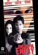 Kanunsuz Giriş (1992) afişi