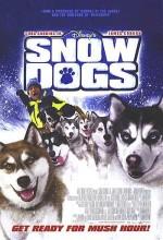 Kar Köpekleri (2002) afişi