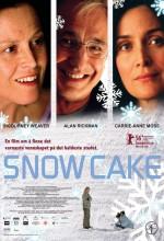 Kar Pastası (2006) afişi