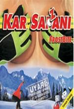 Kar Sazanı (2005) afişi