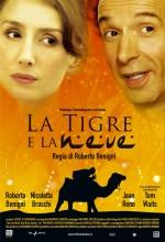 Kar ve Kaplan (2005) afişi