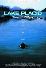 Kara Göl (1999) afişi