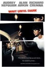 Karanlığa Kadar Bekle (1967) afişi