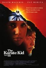 Karateci Çocuk 3 Afişi