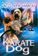 Karateci Köpek
