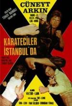 Karateciler İstanbul'da (1974) afişi