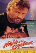 Kasırga Gecesi (1990) afişi