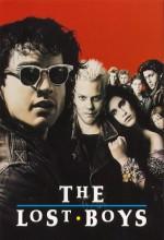 Kayıp Gençler (1987) afişi
