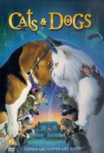 Kediler Ve Köpekler