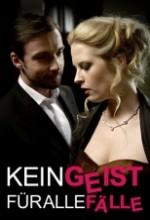 Kein Geist Für Alle Fälle (2010) afişi