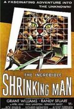 Kendi Kendine Küçülen Adam (1957) afişi