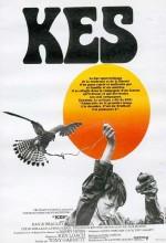 Kerkenez (1969) afişi