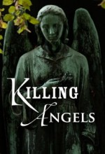 Killing Angels (2014) afişi