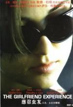 Kiralık Sevgili (2009) afişi