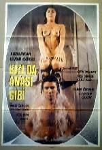 Kız Da Anası Gibi (1980) afişi